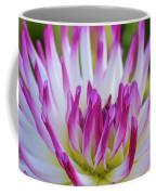 Semicactus Dahlia Coffee Mug