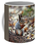 Shadow Boxing. Red Squirrel Coffee Mug