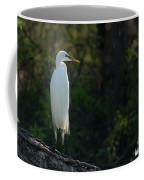 Shadow Heron Coffee Mug