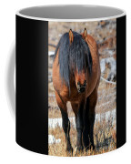 Shaggy Stallion Coffee Mug