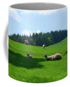 Sheep And Lambs In A Field Coffee Mug