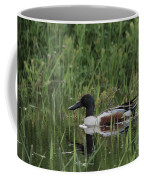 Shovel Tail In Shallows Coffee Mug