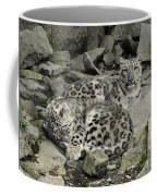 Siesta Sentinel Coffee Mug