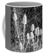 Silver Thistle Seed Pods Coffee Mug