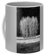 Silver Trees, Yosemite National Park Coffee Mug