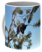 Sleeping Bear Cub Coffee Mug