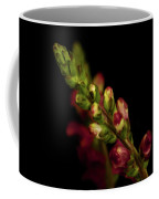 Snapdragon In Red Coffee Mug