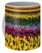 Spectacular Rows Of Colorful Tulips Coffee Mug