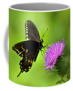 Spicebush Swallowtail Butterfly Coffee Mug