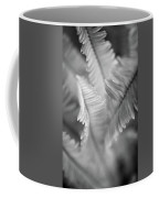 Spring Fern Macro In Black And White Coffee Mug