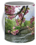 Spring Time In Windham  Coffee Mug by Michael Hughes