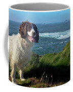 Springer Spaniel Dog In Sennen Cove Coffee Mug