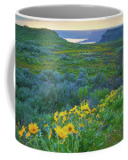 Steamboat Rock 01 Coffee Mug
