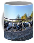 Steers Coffee Mug