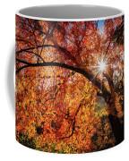 Sun Peaking Through The Autumn Colors  Coffee Mug