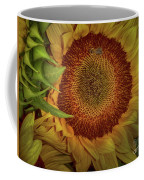 Sunflower Splendor Coffee Mug by Judy Hall-Folde