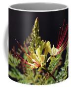 Sunlit Yellow Bird Of Paradise Coffee Mug