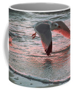 Sunset Glide Coffee Mug