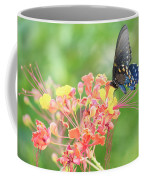 Swallowtail Butterfly Wings  Coffee Mug