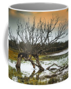 Swamp And Dead Tree Coffee Mug