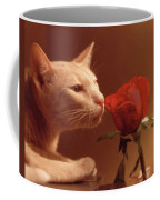 Taffy Coffee Mug