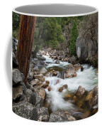 Tenaya Creek, Yosemite National Park Coffee Mug