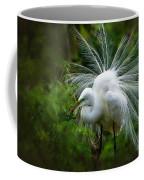 The Display Coffee Mug