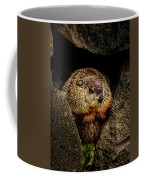 The Groundhog Coffee Mug by Bob Orsillo