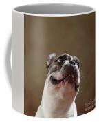 The Look Coffee Mug