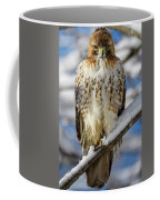 The Look, Red Tailed Hawk 1 Coffee Mug by Michael Hubley