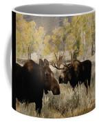 The Moose Rut Coffee Mug