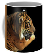 Tiger On Black Coffee Mug by Alison Frank