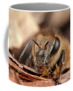 Tight Portrait Coffee Mug by Brian Hale