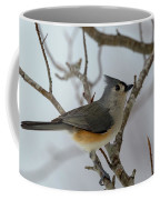 Titmouse Winter Morning Cutie  Coffee Mug
