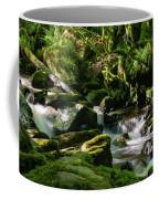 Torc Waterfalls Two Coffee Mug