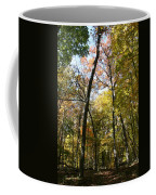 Transitioning Merwin Canopy Coffee Mug by Dylan Punke
