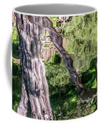 Tree Reflected Coffee Mug by Kate Brown