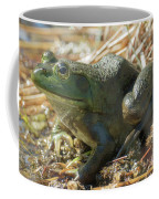 True Frog Coffee Mug by Sally Sperry