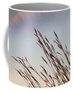 Turkey Foot Grass At Sunset Coffee Mug