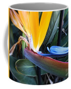 Vibrant Bird Of Paradise #2 Coffee Mug