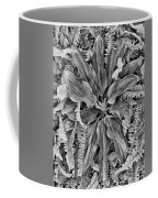 Waikiki Floral Study 5 Coffee Mug