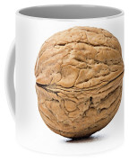 Walnut White Background Coffee Mug