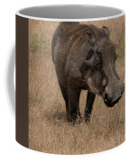 Warm And Fuzzy Warthog Coffee Mug by Mary Lee Dereske