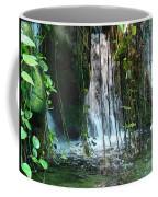 Water Feature  Coffee Mug