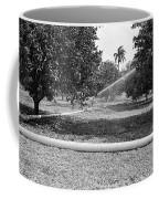 Water Spray Orchard Coffee Mug
