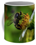 Western Sand Wasp Coffee Mug