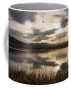 Wetlands At Dusk Coffee Mug
