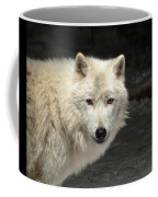 What's For Dinner? Coffee Mug by Susan Rissi Tregoning