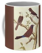White Headed Munia, Double Coloured Seed Eater And Violet Eared Waxbill Coffee Mug