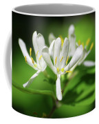 White Honeysuckle Flowers Coffee Mug